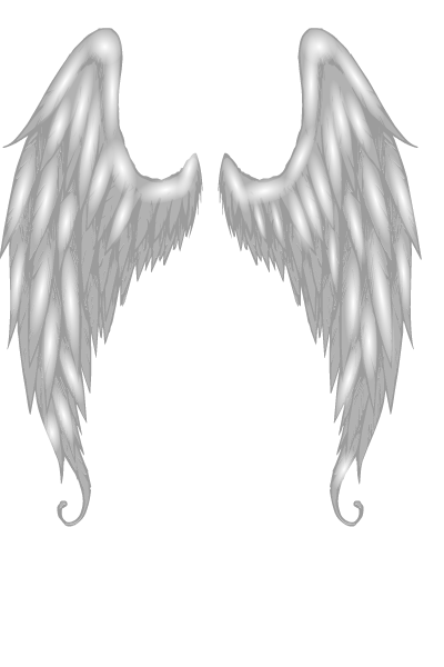 Angel-wing-2.png