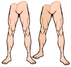 foreshortened-legs
