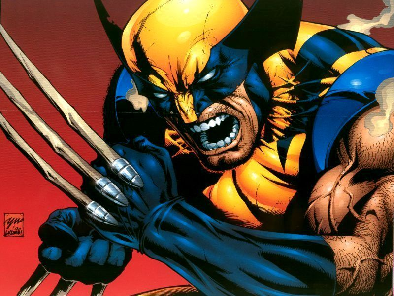 Wolverine-Wallpaper-wolverine-3508352-800-600